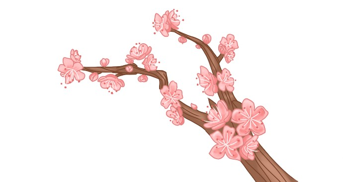 A branch of Sakura flowers